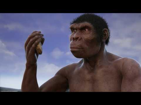Братья и сестры, познакомьтесь с эволюцией человека