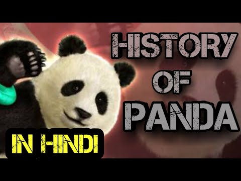 History of panda tekken 7 in hindi / by Anything games lover