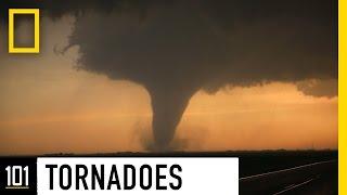 Video Tornadoes 101 | National Geographic MP3, 3GP, MP4, WEBM, AVI, FLV Oktober 2018