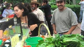 San Miguel de Allende - Tianguis Organico - Organic Market