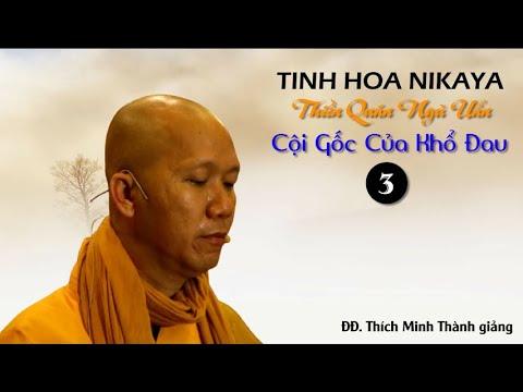Tinh Hoa NIKAYA - Thiền Quán Ngũ Uẩn - Cội Gốc Của Khổ Đau 3