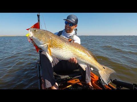 Kayak Fishing Big Bull Redfish On A Tough Day Field Trips