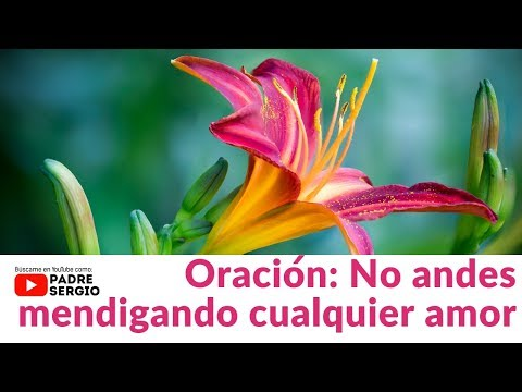 Tarjetas de amor - Oración: No andes mendigando cualquier amor