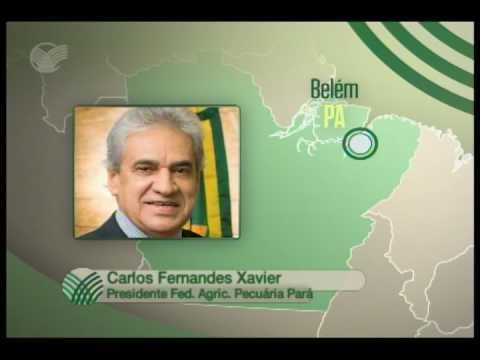 SINDICATO NA TV - Desempenho de funções - Belém (PA) / Carlos Fernandes Xavier