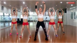 Video Senam Aerobic zumba free style dance untuk gerakan otot perut MP3, 3GP, MP4, WEBM, AVI, FLV Agustus 2018