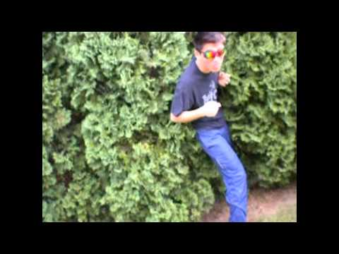 The Ultimate Trickshot Dunk (видео)