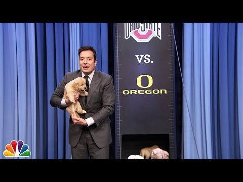 Puppies Predict the 2015 College Football National Championship