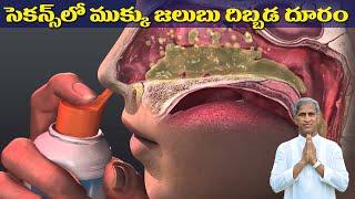 సెకన్స్ లో ముక్కు జలుబు దిబ్బడ దూరం !   Nose Blockage   Dr Manthena Satyanarayana Raju Videos