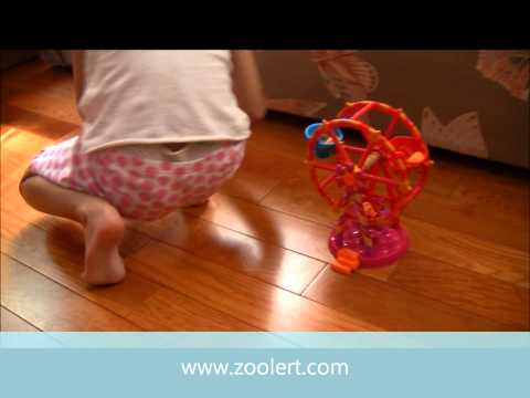 Big Wheel vs Bus - Mini Lalaloopsy Tree House, Bea's School Bus and Ferris Wheel Join us on Facebook http://www.facebook.com/zooLertOfficial Follow us on Twitter http://twitter...