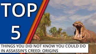 5 things you did not know you could do in Assassin's Creed: Origins
