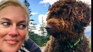This video is part of a one year long adventure house and pet sitting in Europe and who knows where else! I am from California ...