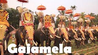 Thiruvanvandoor Gajamela, Chengannur