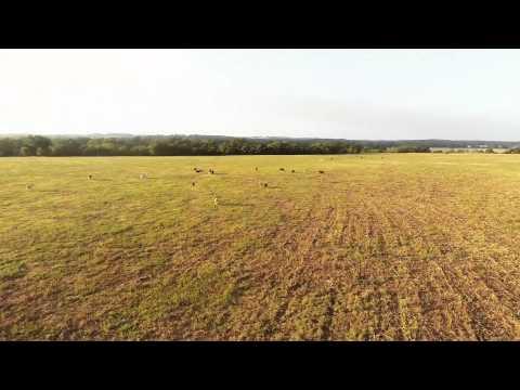 157.25 acres Smithville, TX