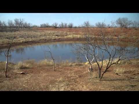 2,990 acres Snyder, TX