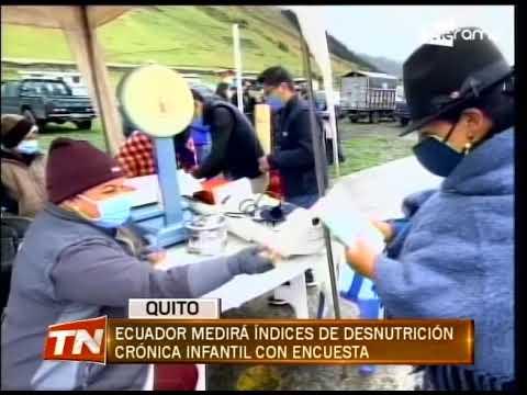 Ecuador medirá índices de desnutrición crónica infantil con encuesta