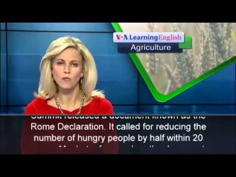 Group Says Ending Hunger Could Be Within Reach