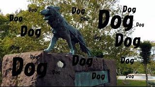 Wakkanai Japan  city photos gallery : Touching Dog Statue in Wakkanai Park, Japan