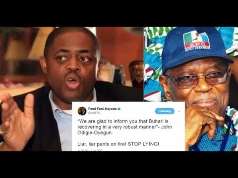 Buhari's doctors have ruled out his ability to function - Fani-Kayode claims