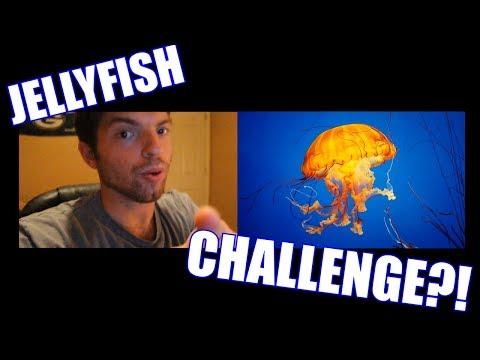 JELLYFISH CHALLENGE?!