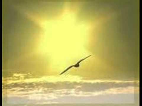Imagens de Deus - Imagem de Deus - Voz da verdade