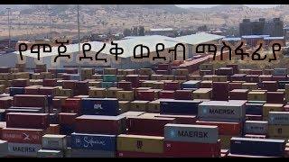የሞጆ ደረቅ ወደብ ማስፋፊያ Mojo Dry Port Expansion / ኢቢኤስ አዲስ ነገር ጥር 21,2011 EBS What's New January 29,2019