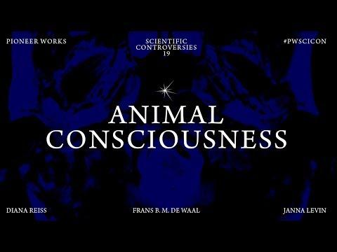 Scientific Controversies: Animal Consciousness