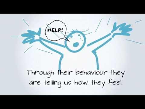 Behavioral intervention strategies.