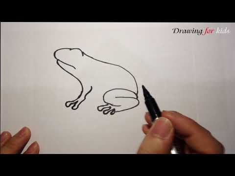 How To Draw a Frog - Step-by-Step