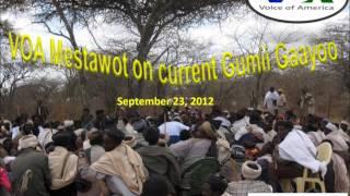 VOA Gumii Gayoo Amharic Trim2