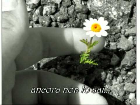 , title : 'Giorgia - Come saprei con testo'