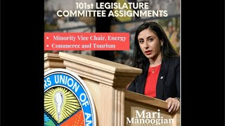 Rep. Mari Manoogian to serve as Minority Vice-Chair of the House's Committee on Energy.