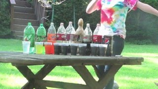 School extra credit project Copyright infringement in case: I do not own any of the soda companies mentioned in this video or Mentos. Obviously. I think that...