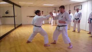Flow in one's technique - Scott Langley Sensei HDKI