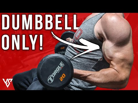 Full Arm Workout in 20 Minutes Using Dumbbells ONLY!