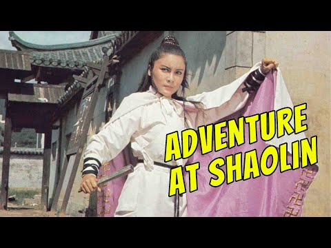 Wu Tang Collection - Adventure At Shaolin (Widescreen)