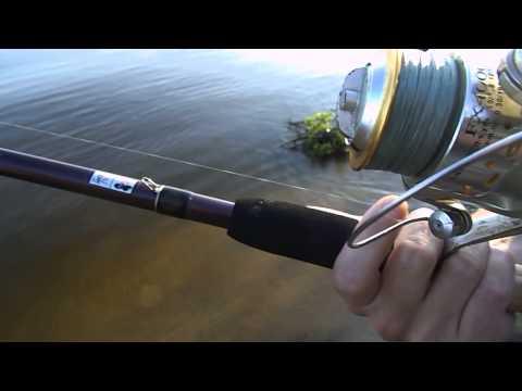 фидеры и насадки для рыбалки