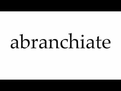 How to Pronounce abranchiate