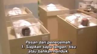 Video Endless love Indonesian sub 😭😭😭😭 MP3, 3GP, MP4, WEBM, AVI, FLV Januari 2018