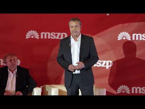Molnár Gyula azt is jelezte: kitart amellett, hogy közös jelöltek legyenek a választókörzetekben,