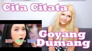 Video Cita Citata - Goyang Dumang (Reaction) MP3, 3GP, MP4, WEBM, AVI, FLV Maret 2018