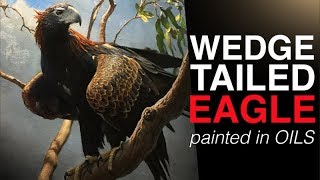 How to paint BIRDS | The Majestic WEDGE TAILED EAGLE | Oil Painting Tutorial