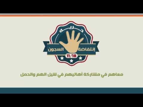 أقوى انفوجرافيك يكشف أوضاع المعتقلين في سجون مصر