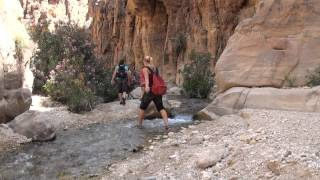 Karak Jordan  city photos : Wadi Al Karak Waterfalls - Video - Hiking in Jordan