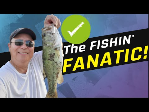 Bass Fishing in Katy TX