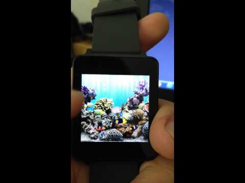 Video of Aquarium Watchface