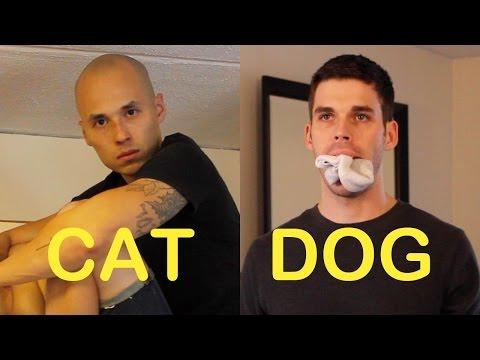 CatFriend vs DogFriend 3