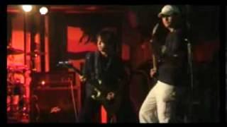 Video Live-Jihlava