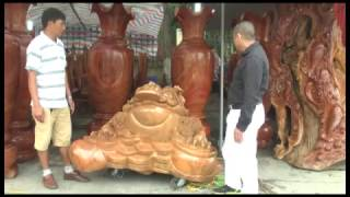 Trưng bày 1.300 tác phẩm sinh vật cảnh tại TP Uông Bí