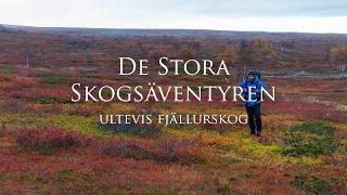 De stora skogsäventyren - Ultevis