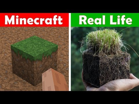 ONE HOUR OF MINECRAFT VS REAL LIFE! Minecraft vs Real Life animation